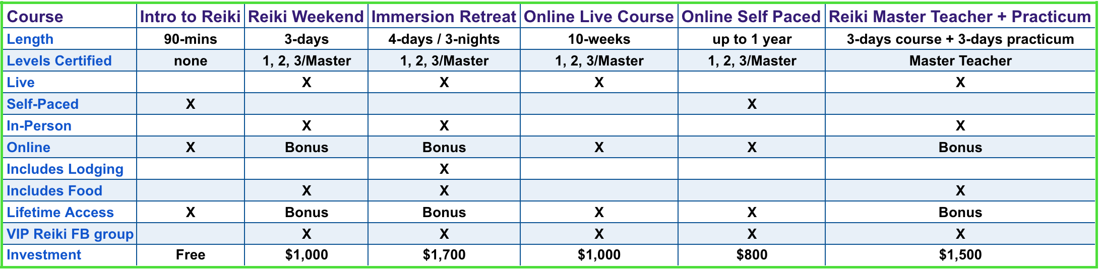 VIP Reiki Program Overview final.png