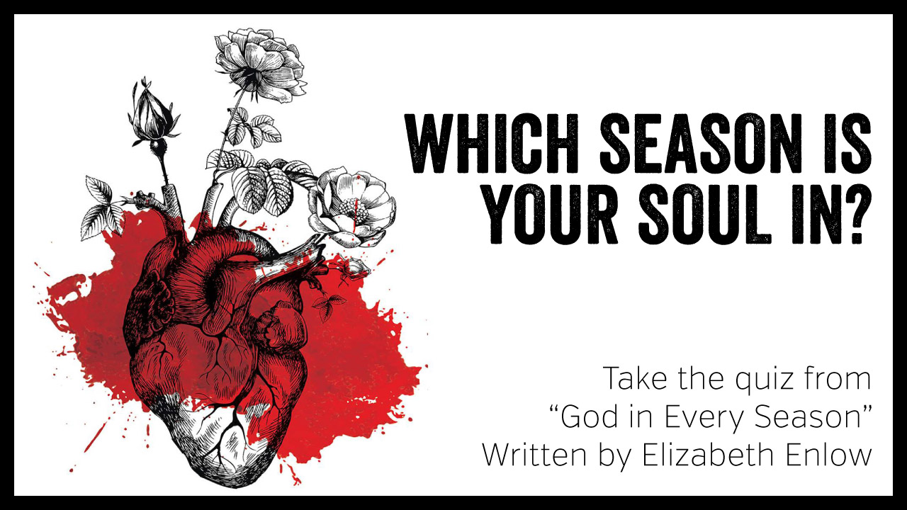Thank you for sharing! - By sharing this quiz you're helping to spread the word about Elizabeth's new book