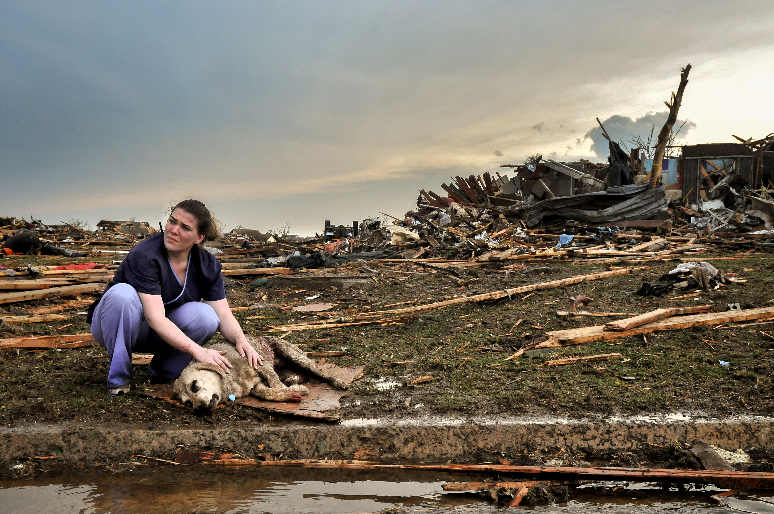 Tiffany Bauman comforts a dying dog that was injured by the EF5 tornado on May, 20 in the Westmoor Neighborhood in Moore Oklahoma