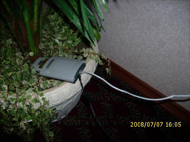 My Wi-Fi is still growing…just add water.