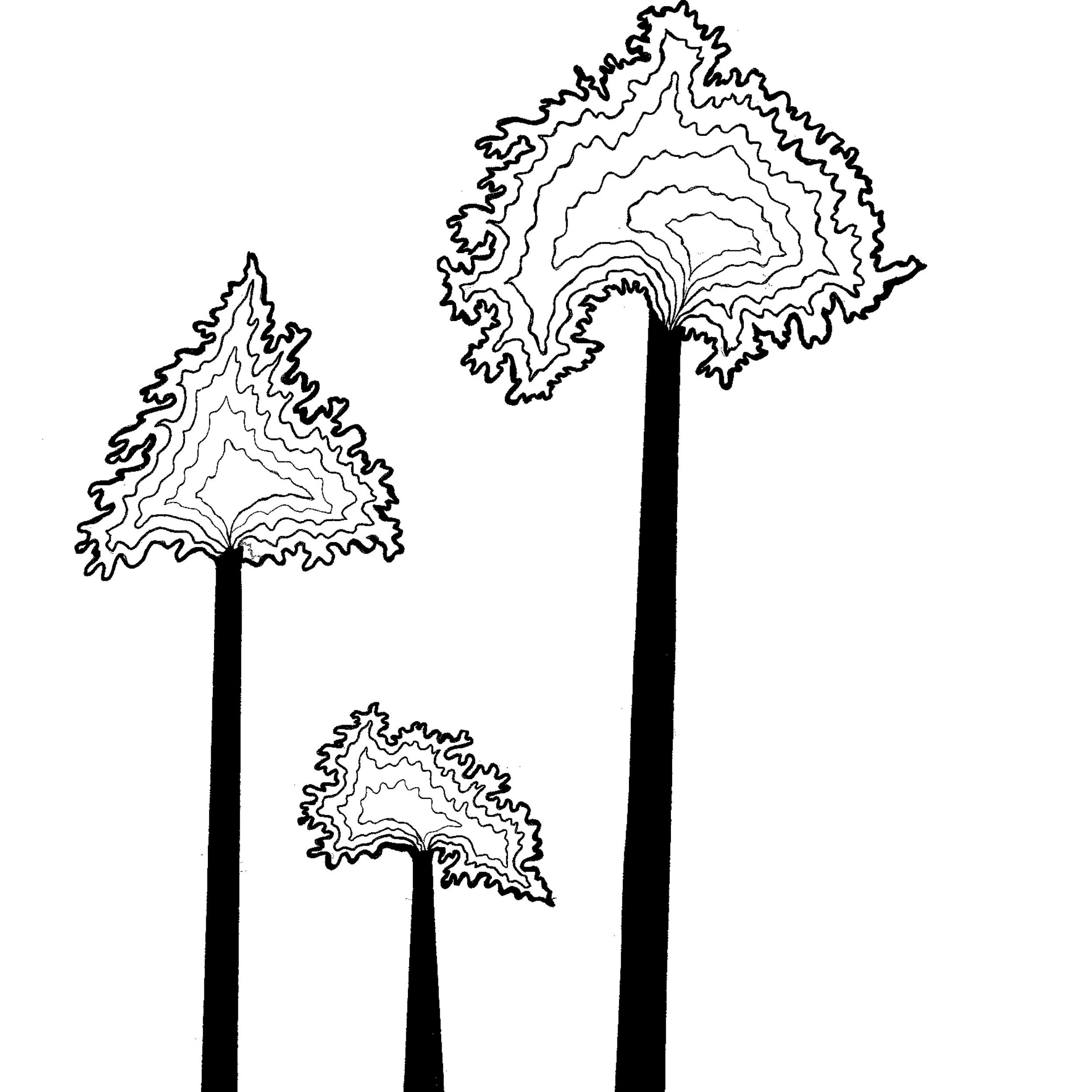 Trees 2014 11.jpg