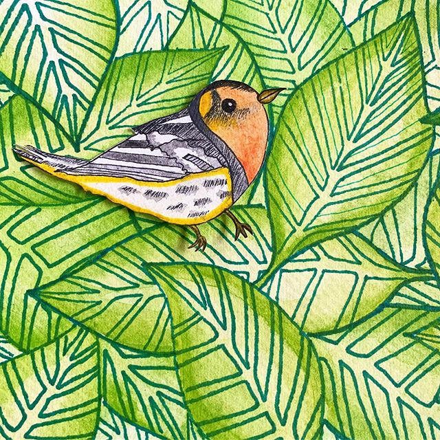 Finding a balance between wanting to completely disappear in the leaves and wanting to wake the whole block up with my morning singing. The warblers get me. ••••••••••••••• #art #japanesetextiles #painting #patterns #golden #sharpie #artist #birds #warbler
