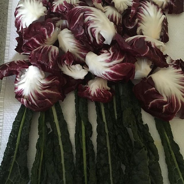 freshly washed radicchio and lacinato kale so pretty! and yummy too!! #youarewhatyoueat
