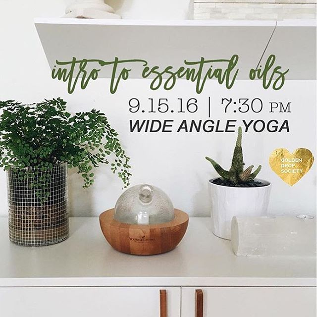 Please join us for an evening of exploring the wonderful world of essential oils. Lesley Graham of Young Living Oils will give us an extensive presentation of how to use this ancient remedy for holistic living. RSVP - wideangleyoga@gmail.com Hope to see you!