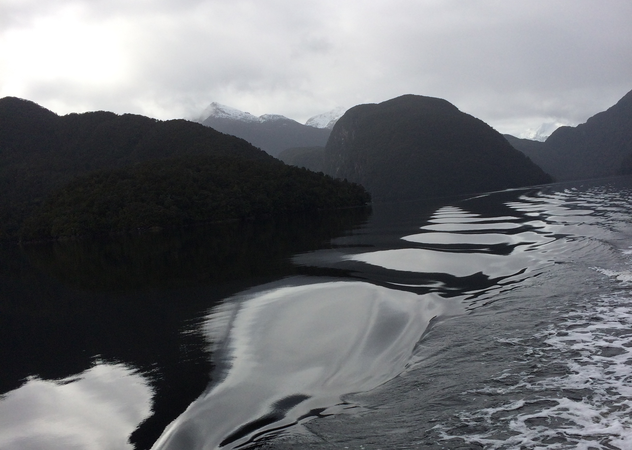 Cruising in Fiordland: the journey is the thing