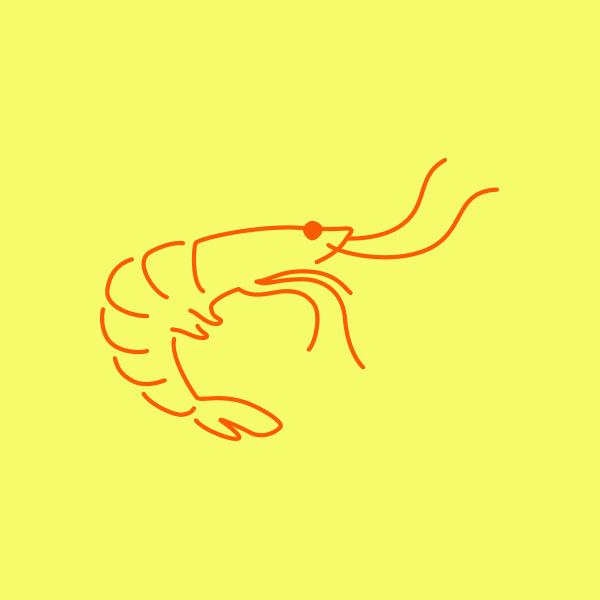 Shrimp_DesignAhoy.jpg