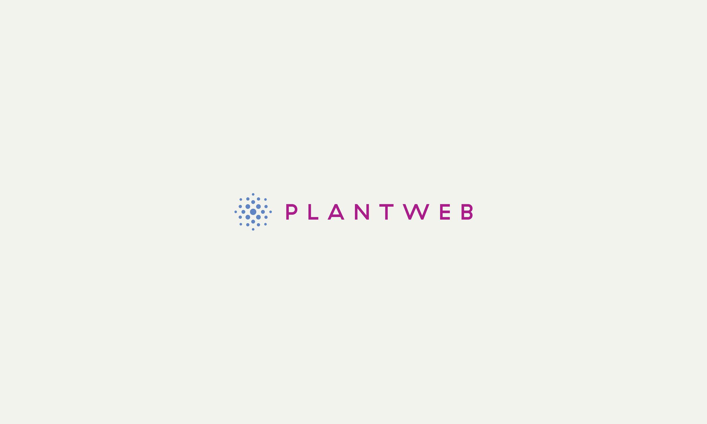 DesignAhoy_plantweb.png