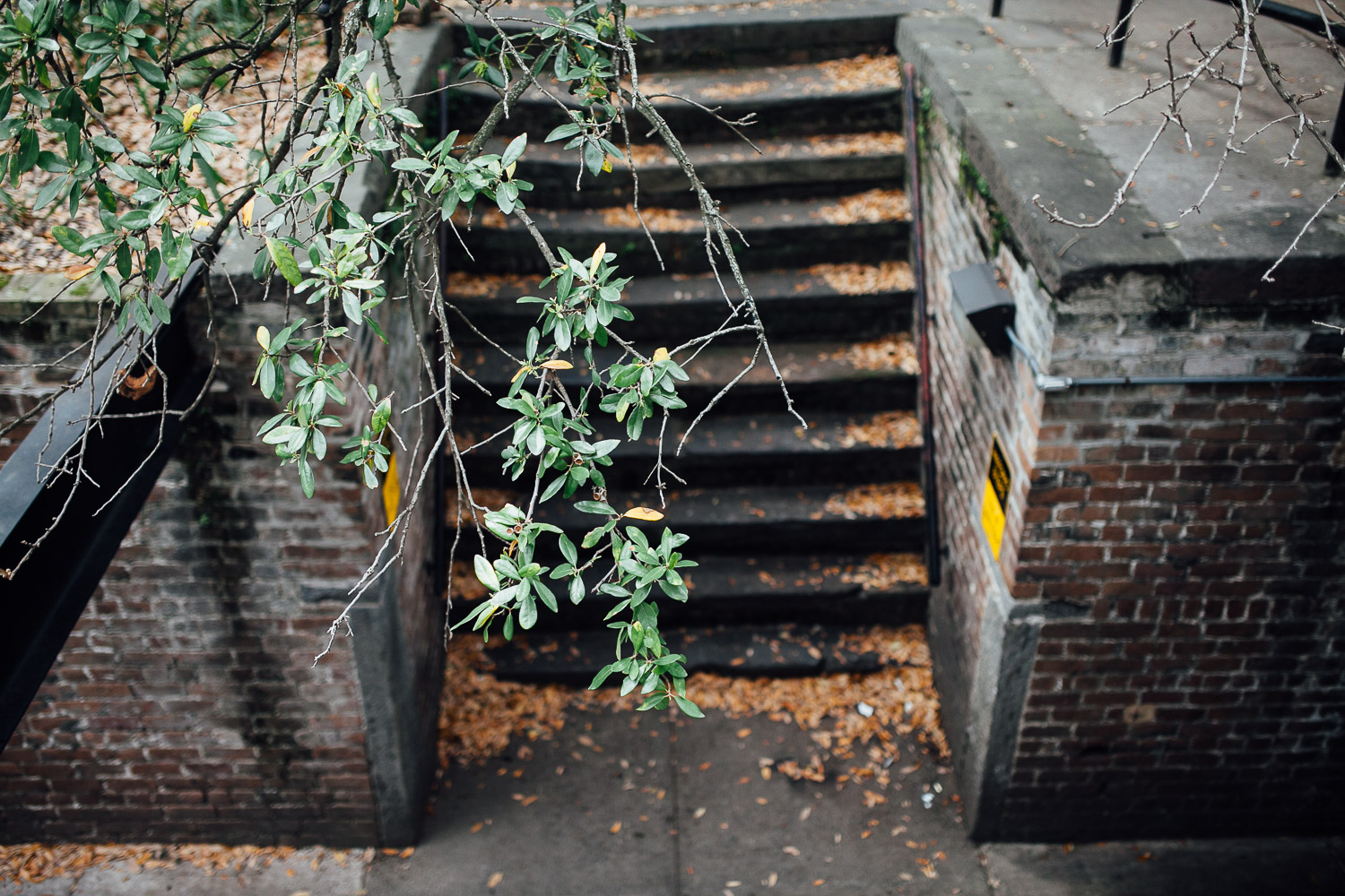 Savannah Georgia - juliette fradin photography_.jpg