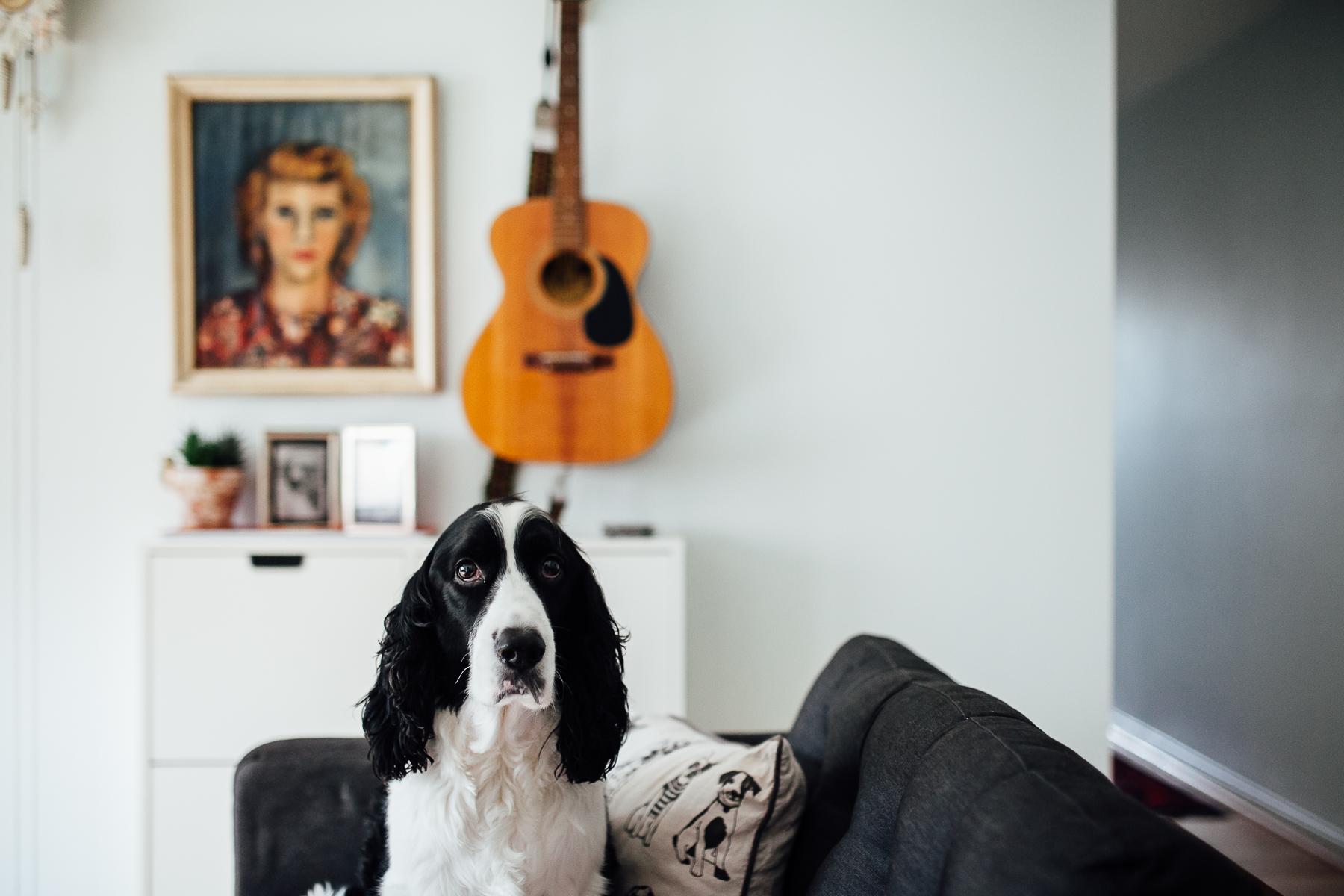 In-home photography Arlington VA-8.jpg