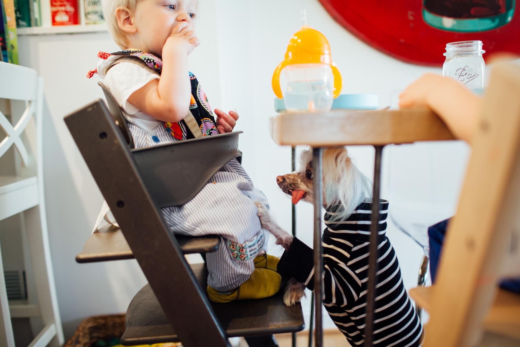 juliette fradin in-home MD photographer-1.jpg