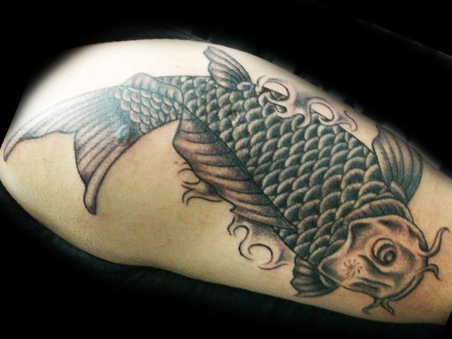 Black and Grey koi Fish