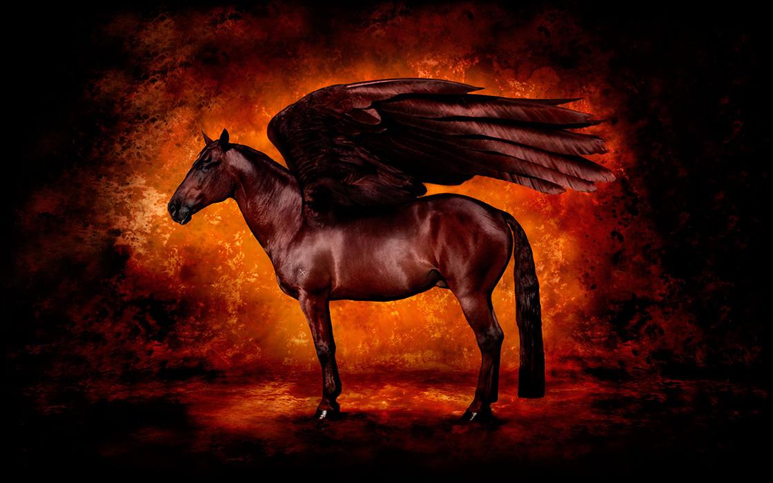 Red Pegasus by Kent Miklenda