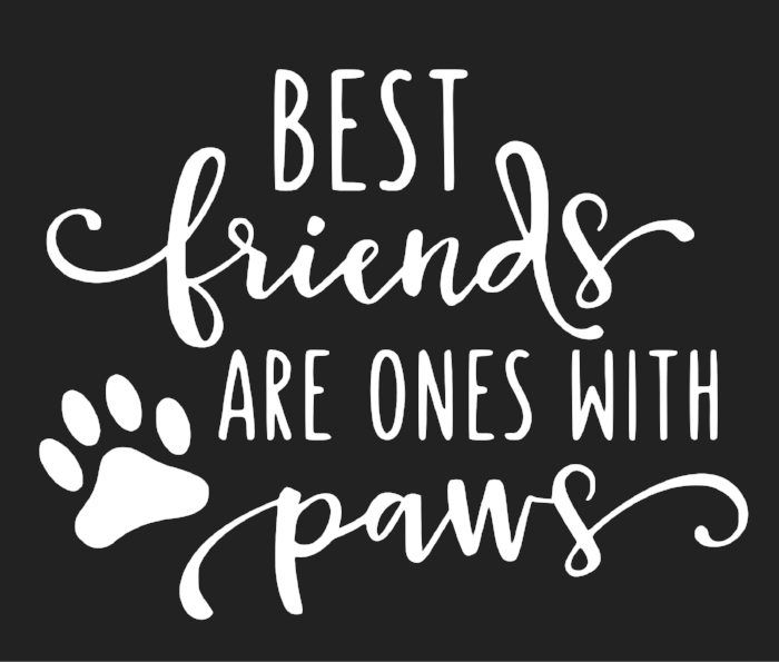 best friends are the ones with paws.jpg