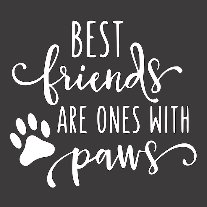 12x12 best friends are the one rustic chalk decor kelowna sign painting.jpg