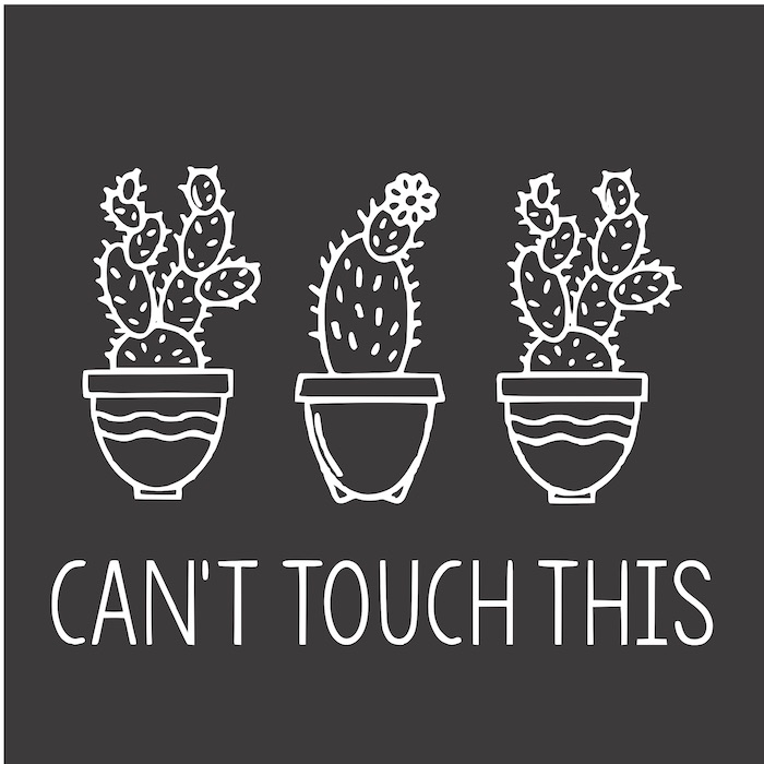 12x12 dont touch this cactus.jpg