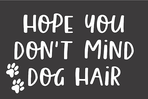 24x36 hope you don't mind dog hair.jpg