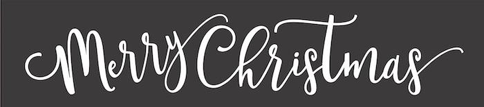 4x16 merry christmas.jpg
