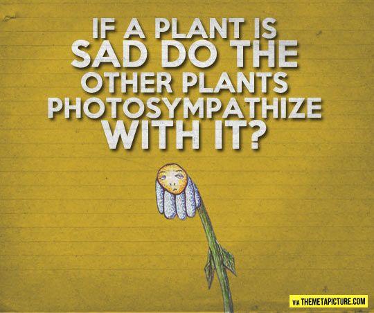 plant puns o m g