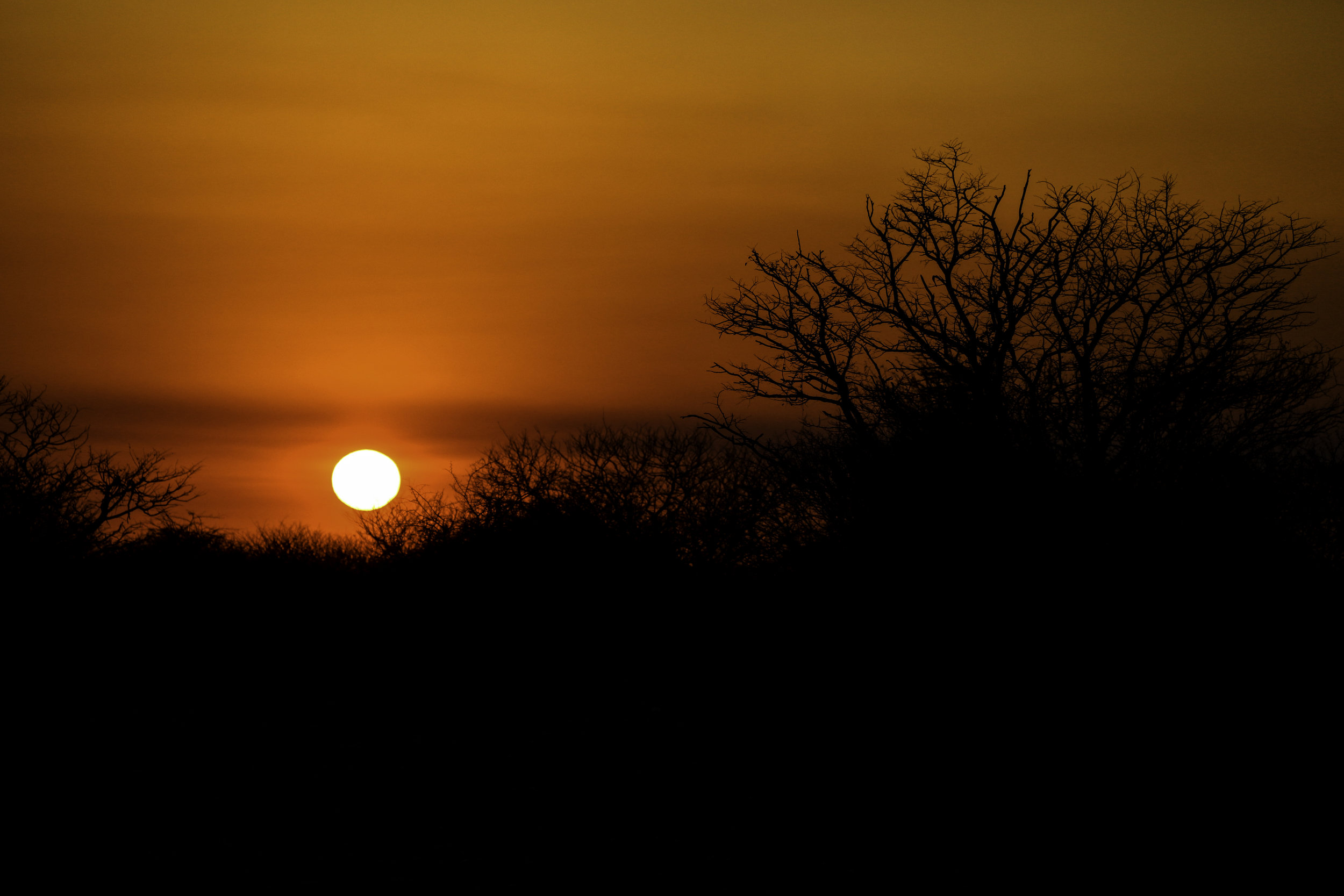 Sun setting in the wilds of Namibia.jpg