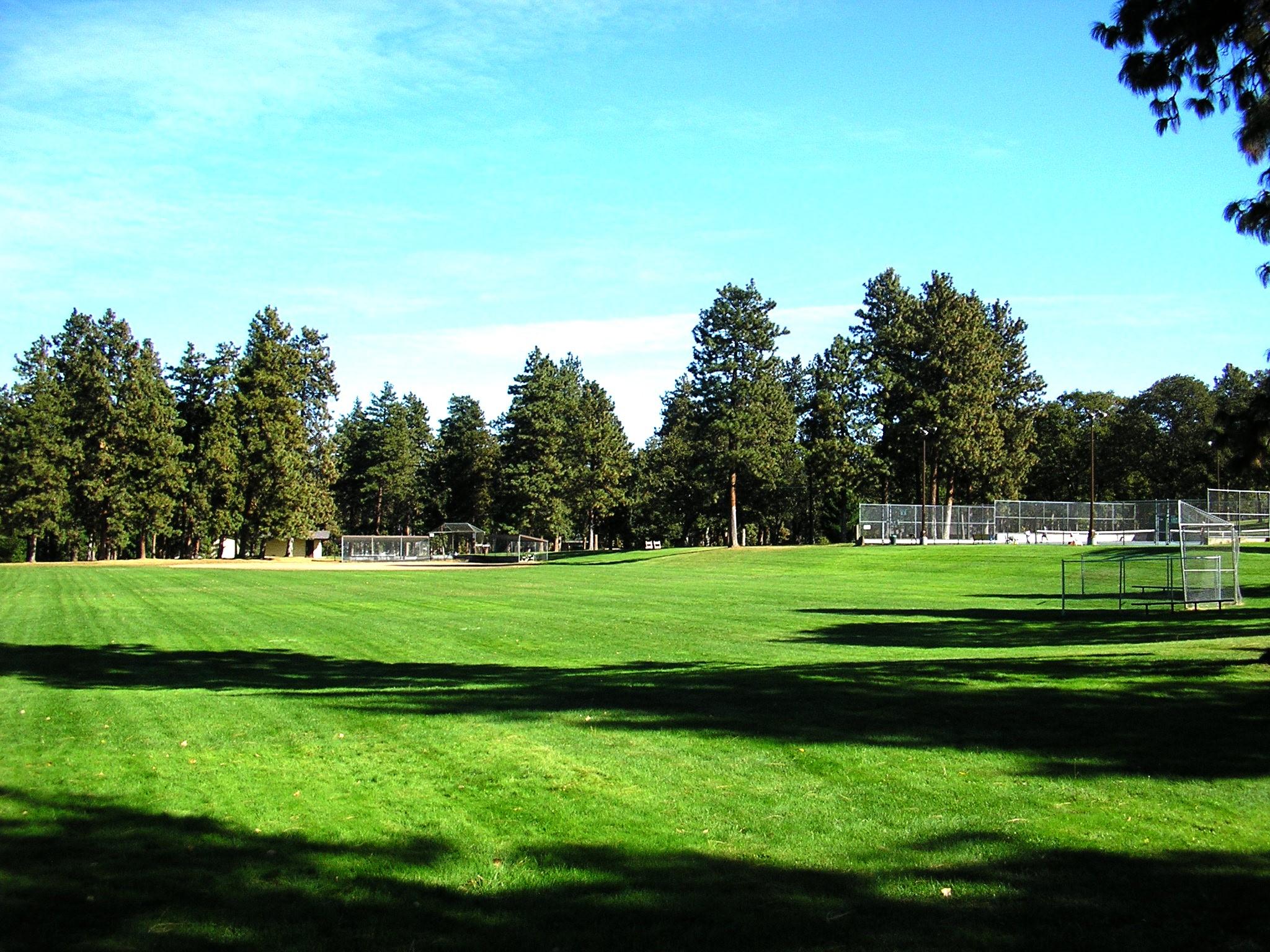Park Ballfied & Tennis Court.jpg