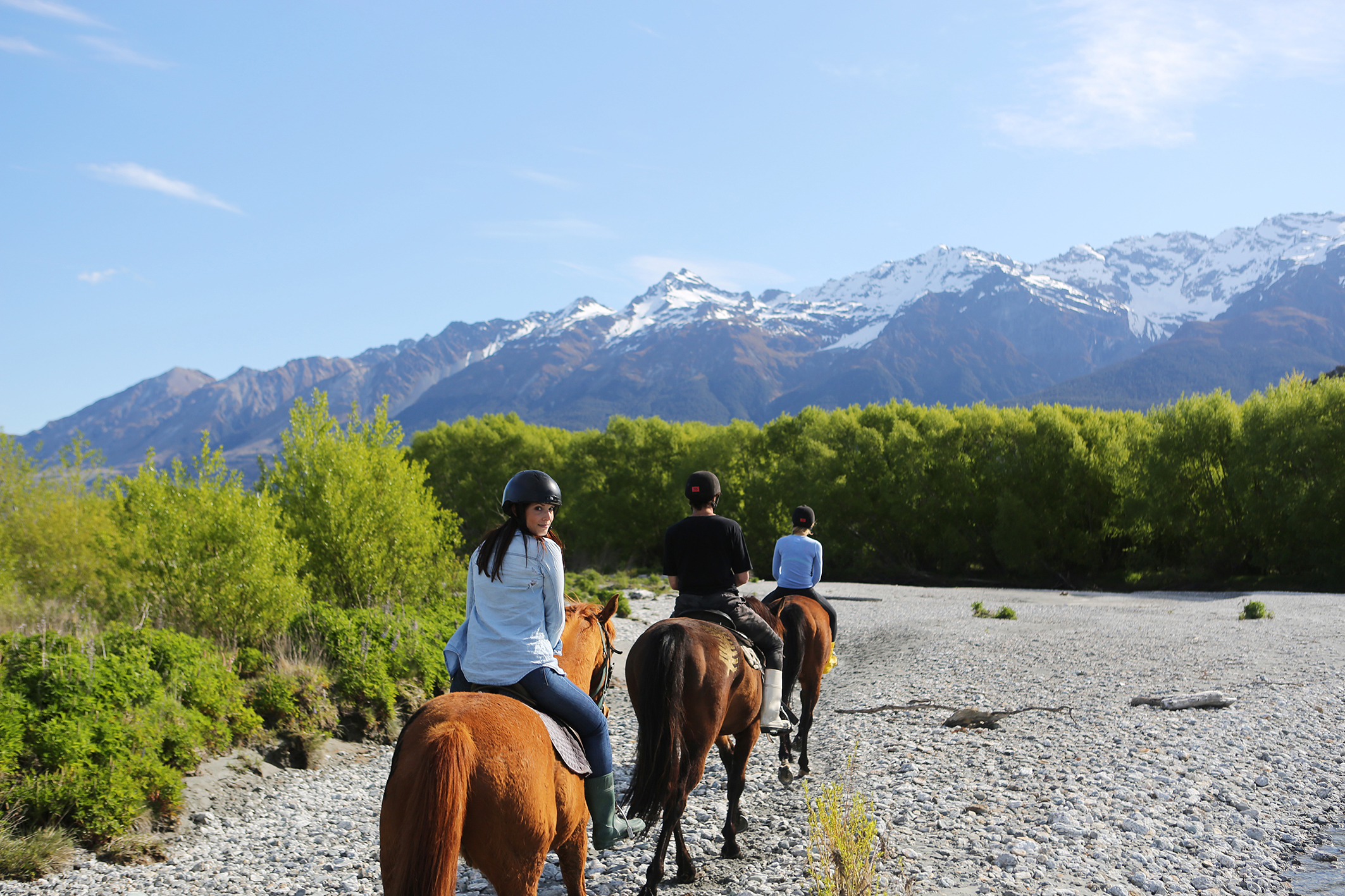 High Country Horses, Glenorchy.