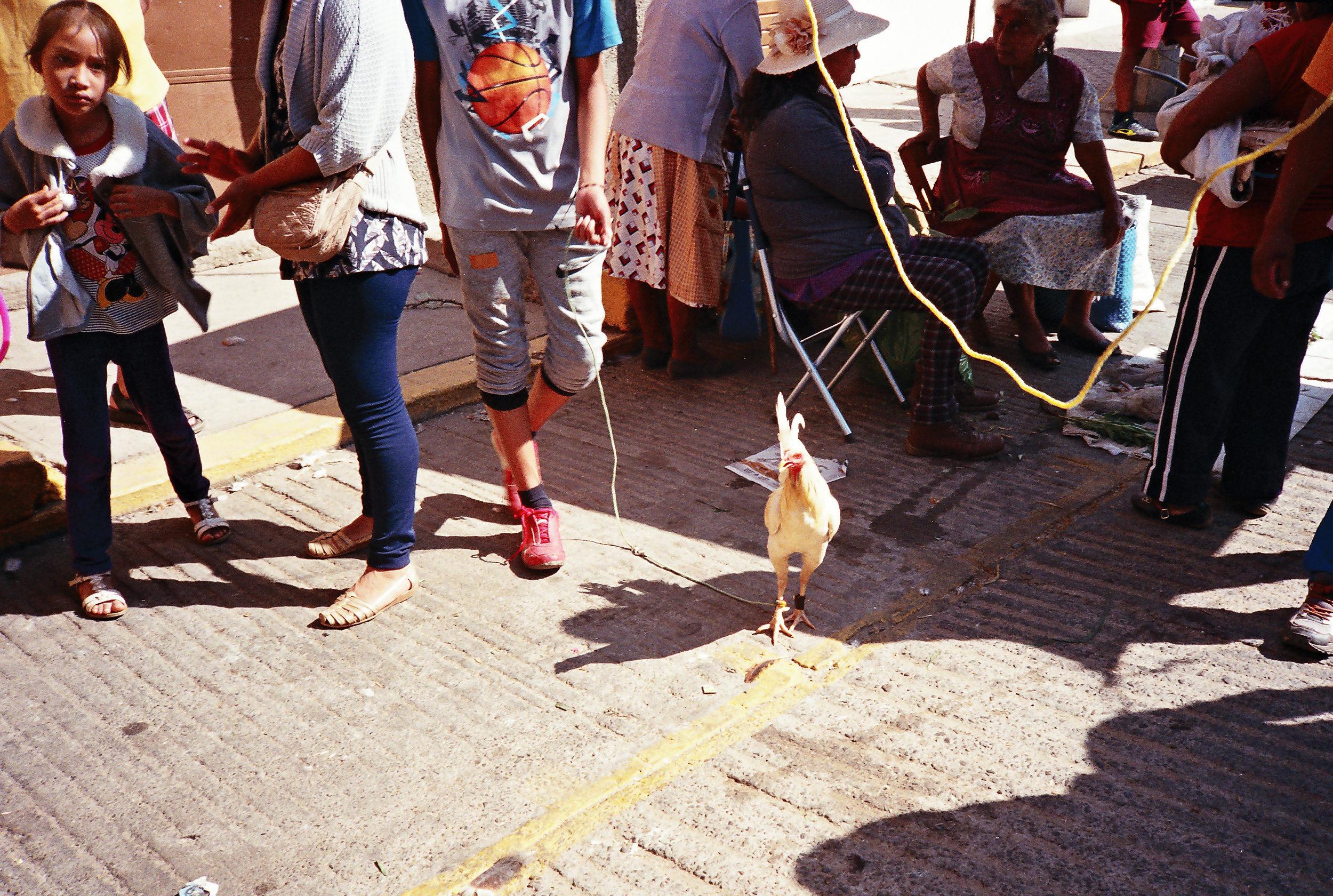 Mercado de Zaachilla, Oaxaca