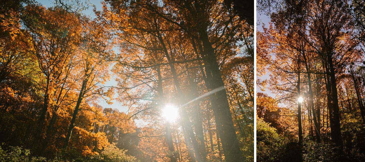preboda-otoño-1.jpg