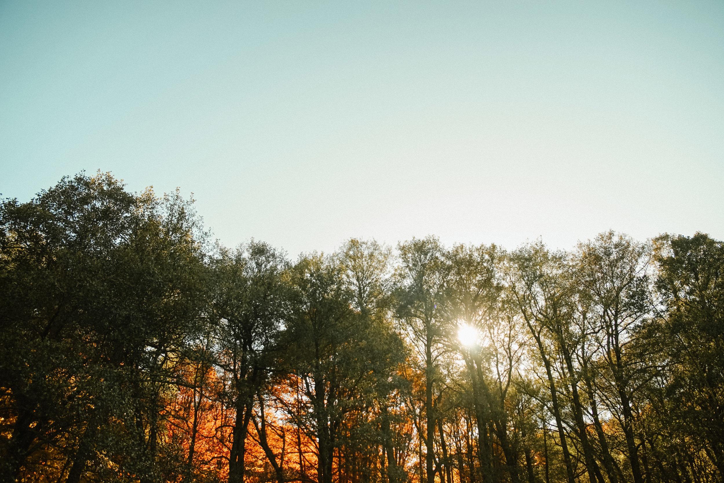 preboda-en-otoño-50.jpg
