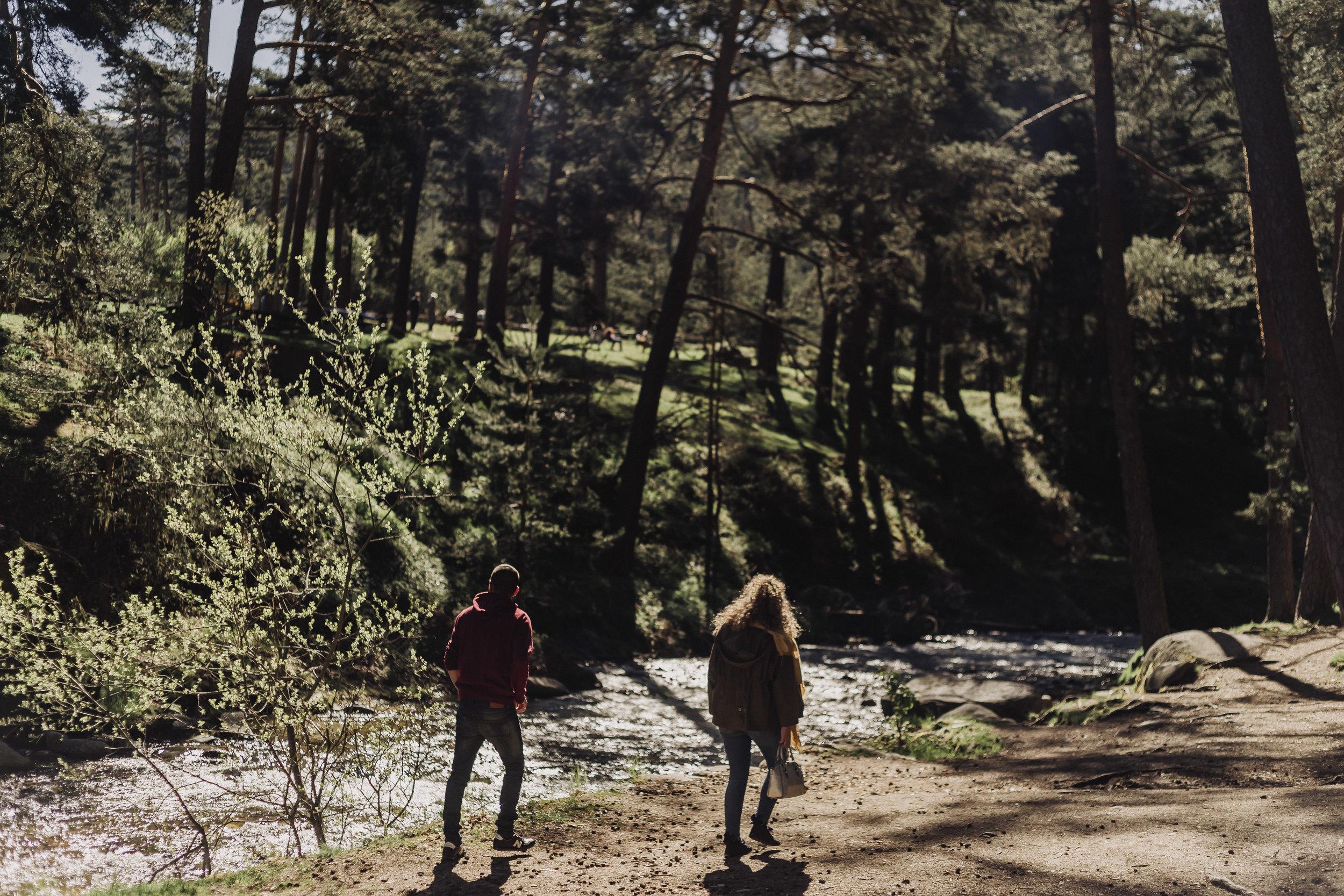 preboda-en- bosque-10.jpg