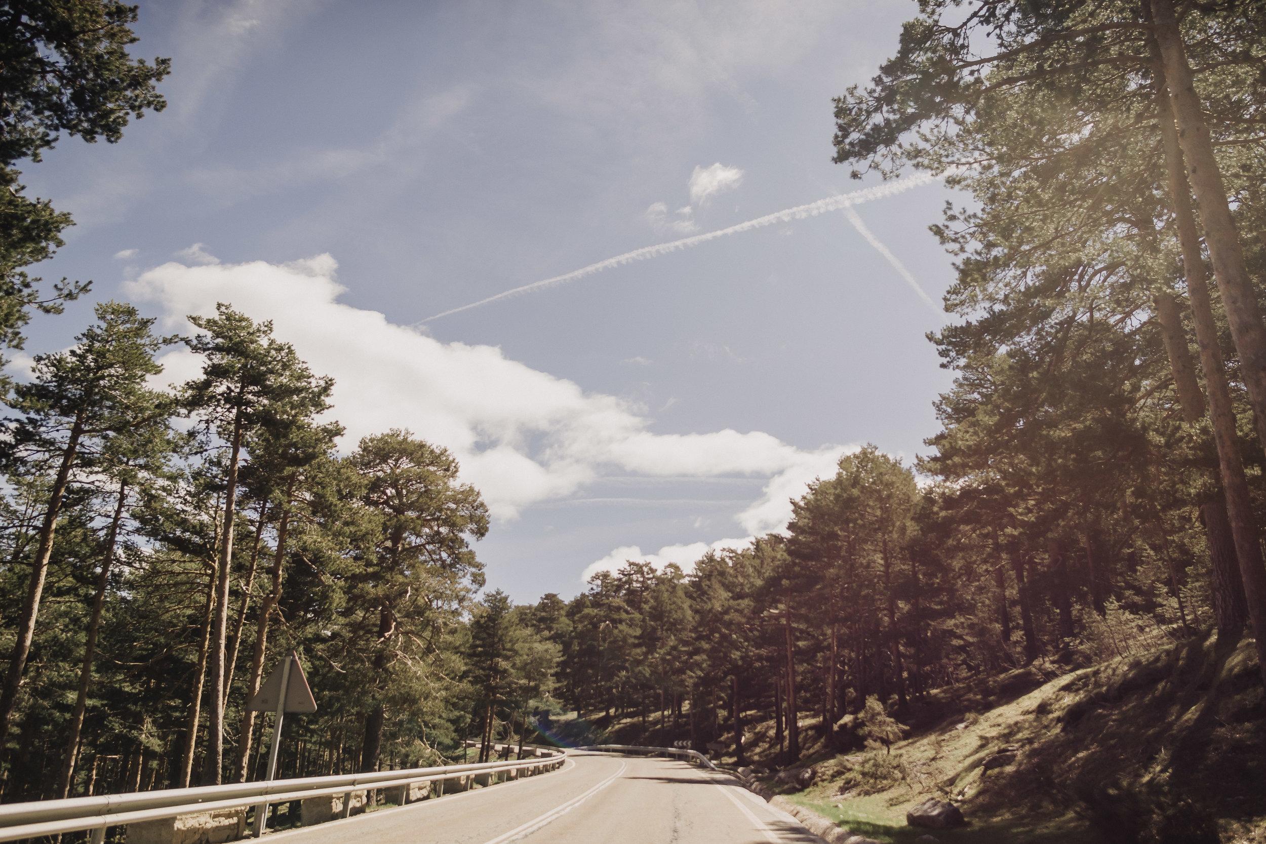 preboda-en- bosque-105.jpg