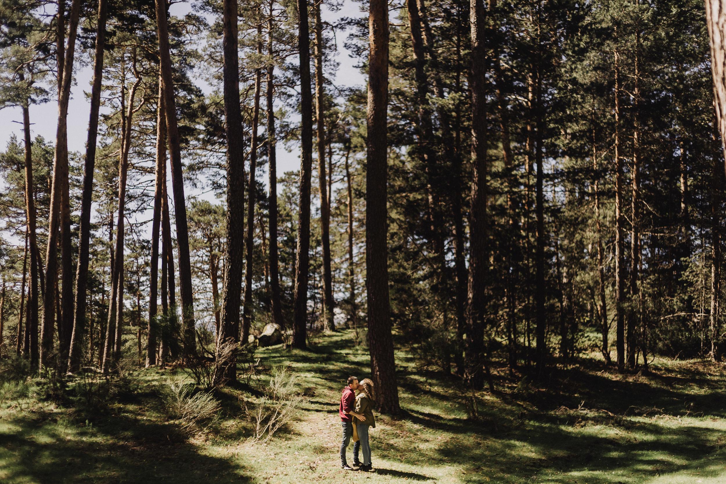 preboda-en- bosque-103.jpg