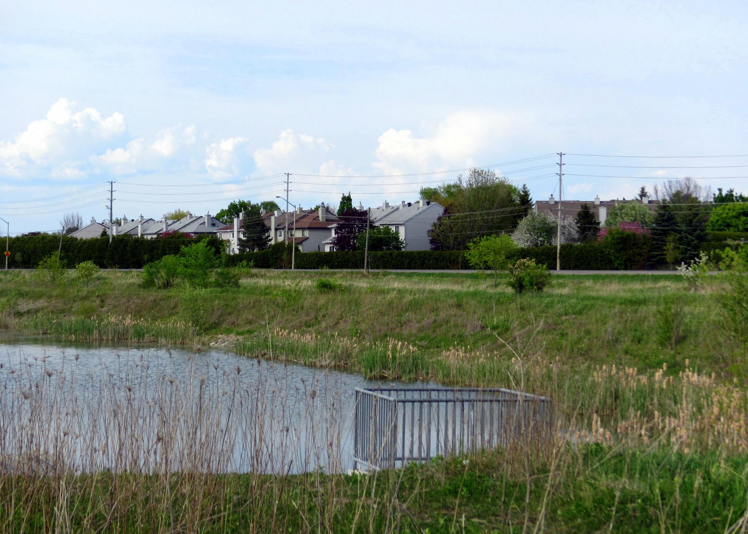 Site of proposed subdivision.