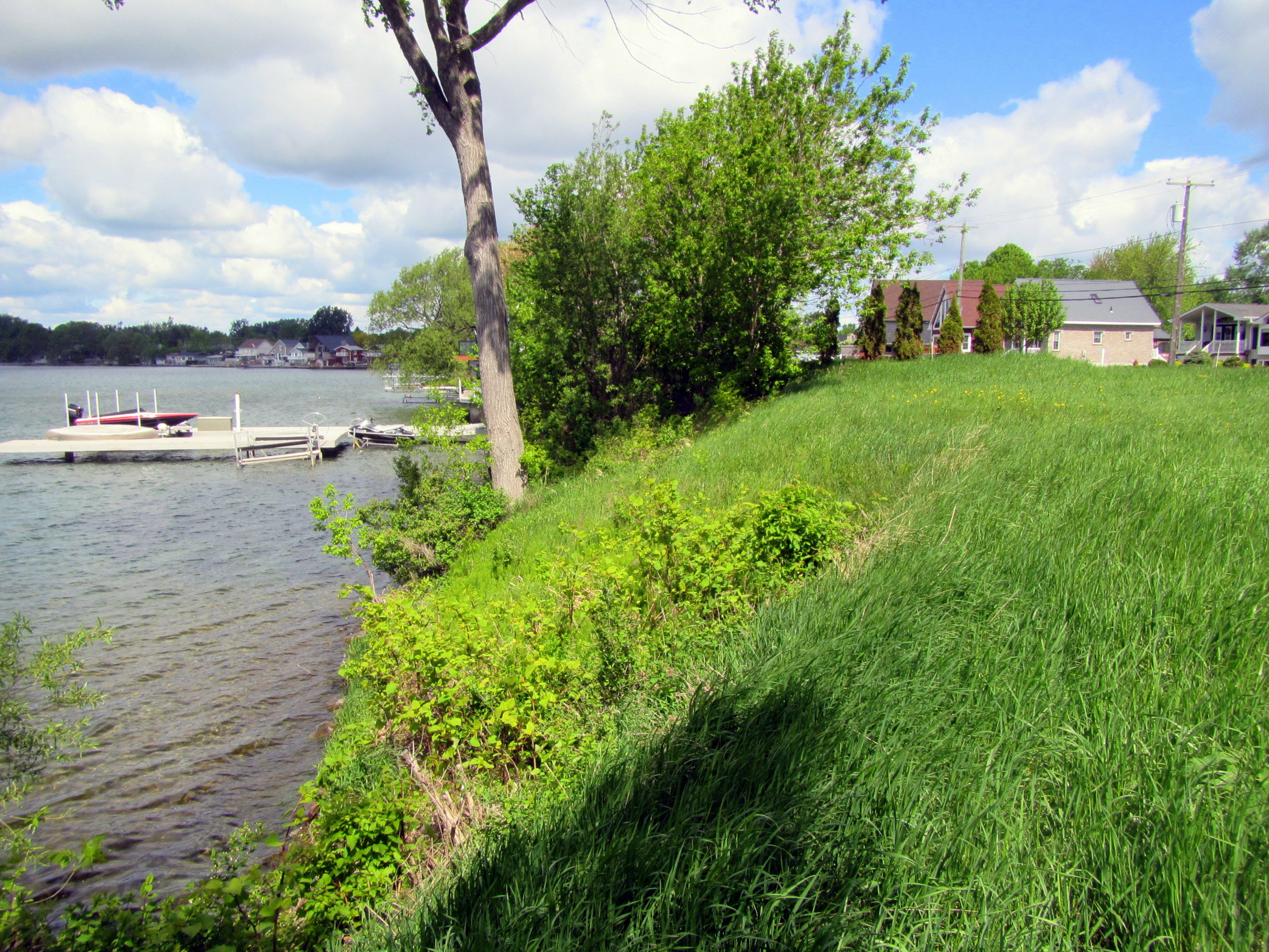 Site of proposed shore-side development.