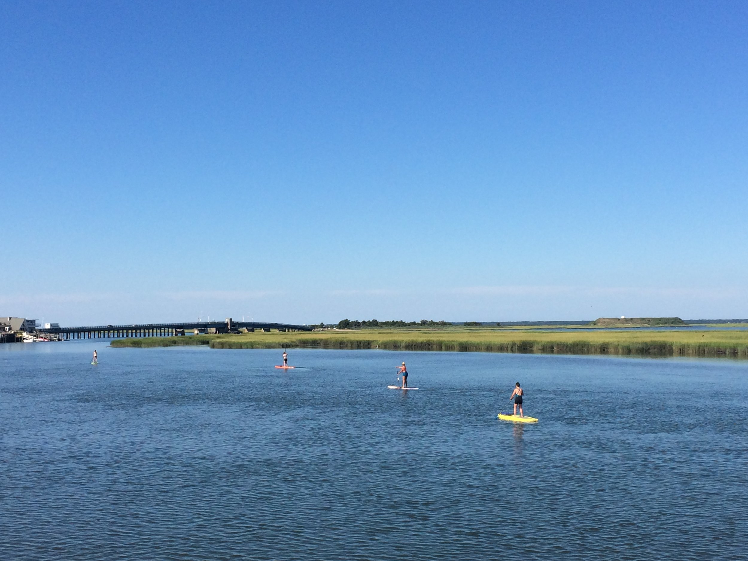 Paddling around Sedge Island at 114th Street and the bay in Stone Harbor, New Jersey. Part of our 1.5 to 2 mile long back bay eco tour.