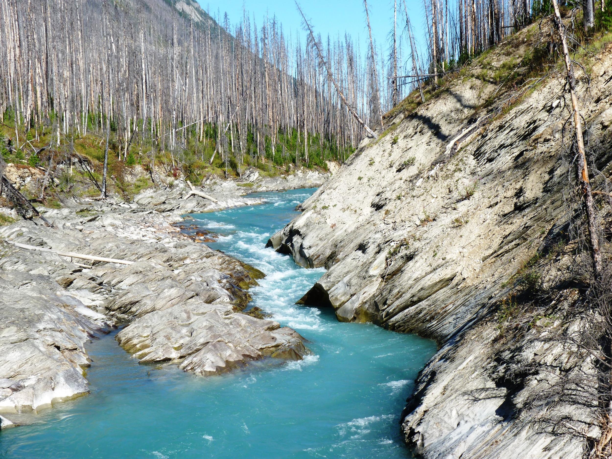 Flow Lake Trail, Kootenay NP