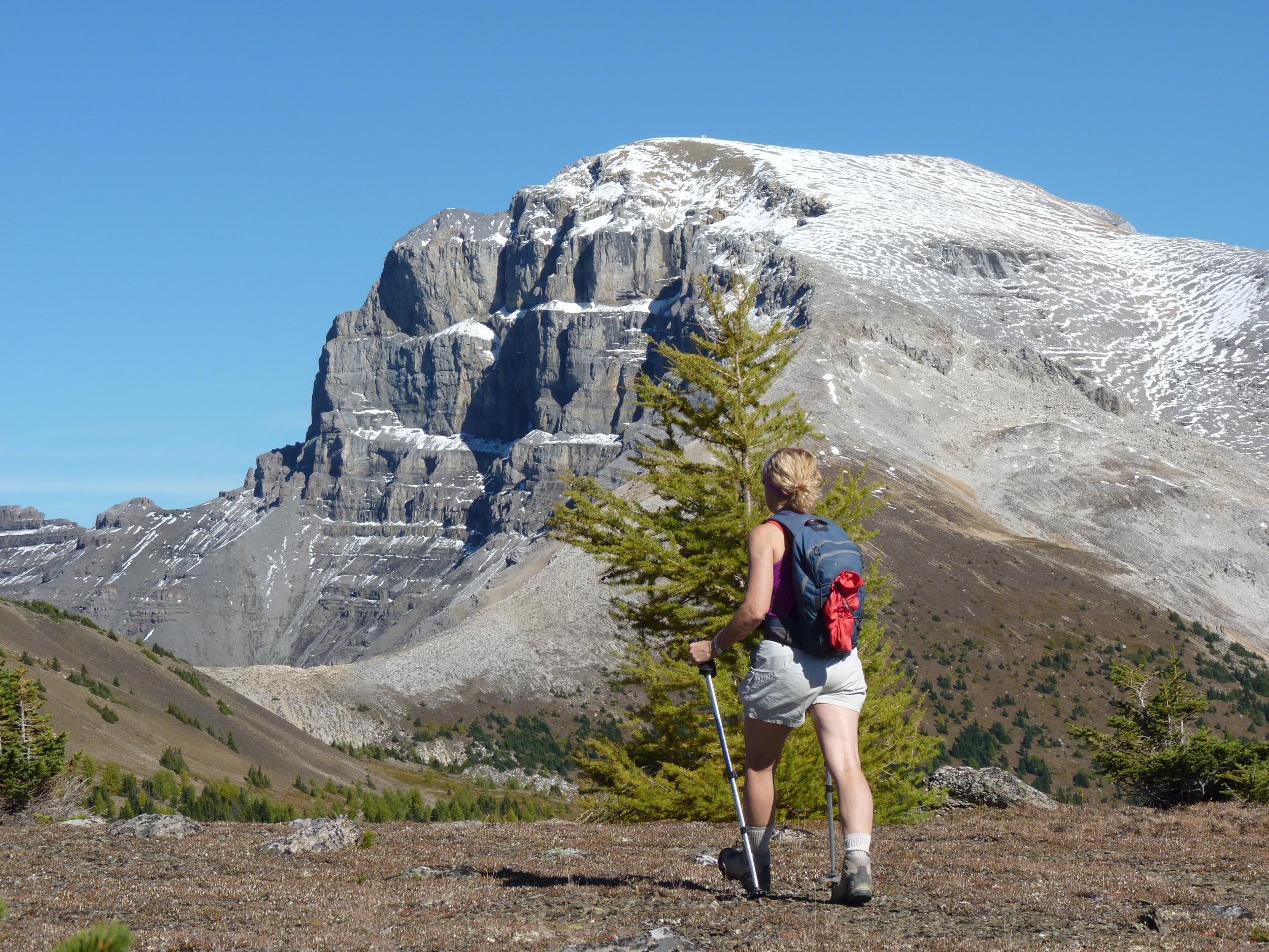 Mt Bourgeau