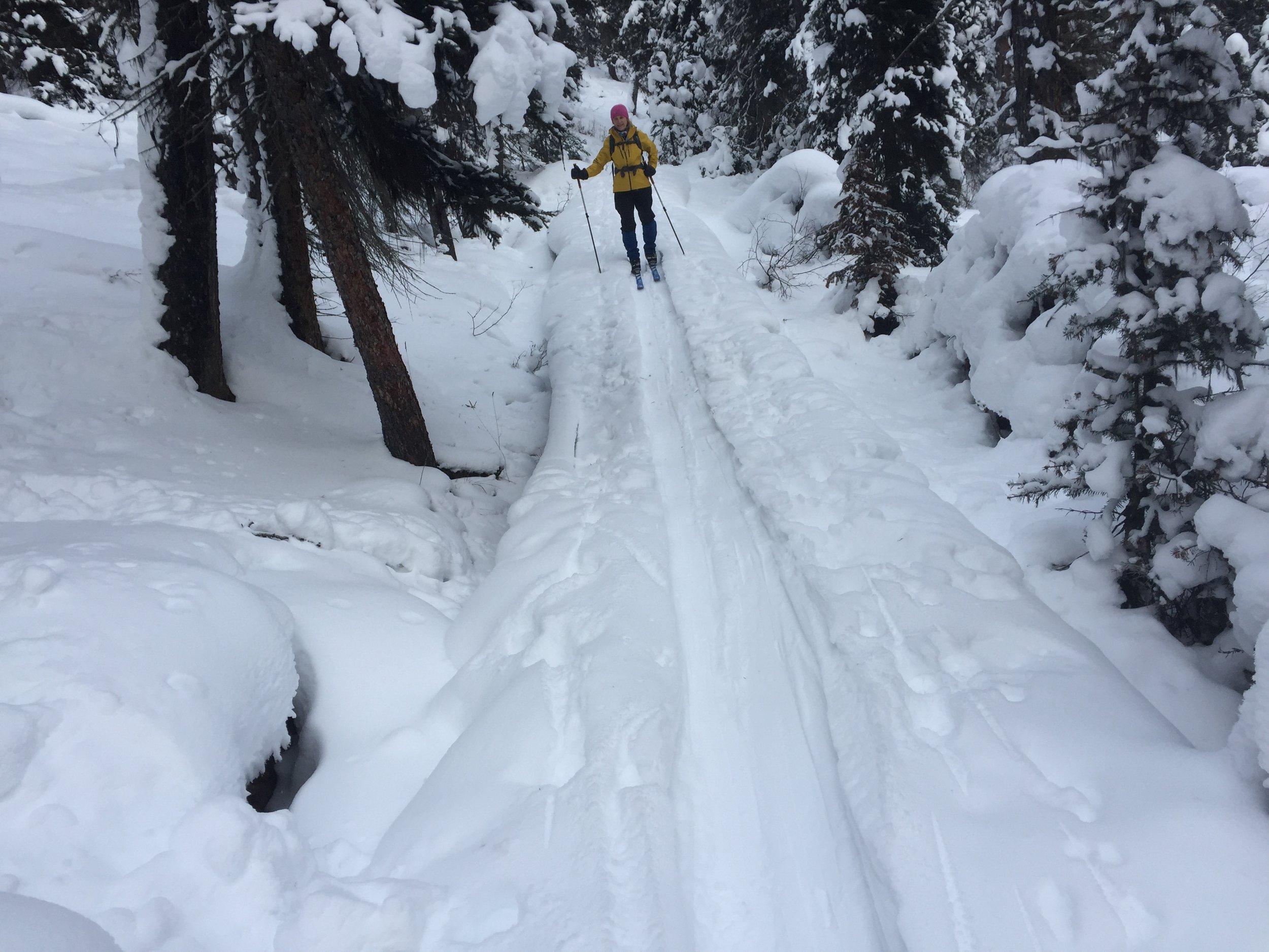 The Shadow Lk trail