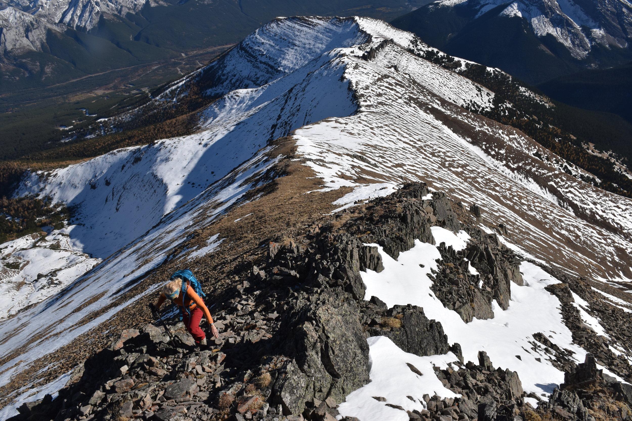 nearing the peak....