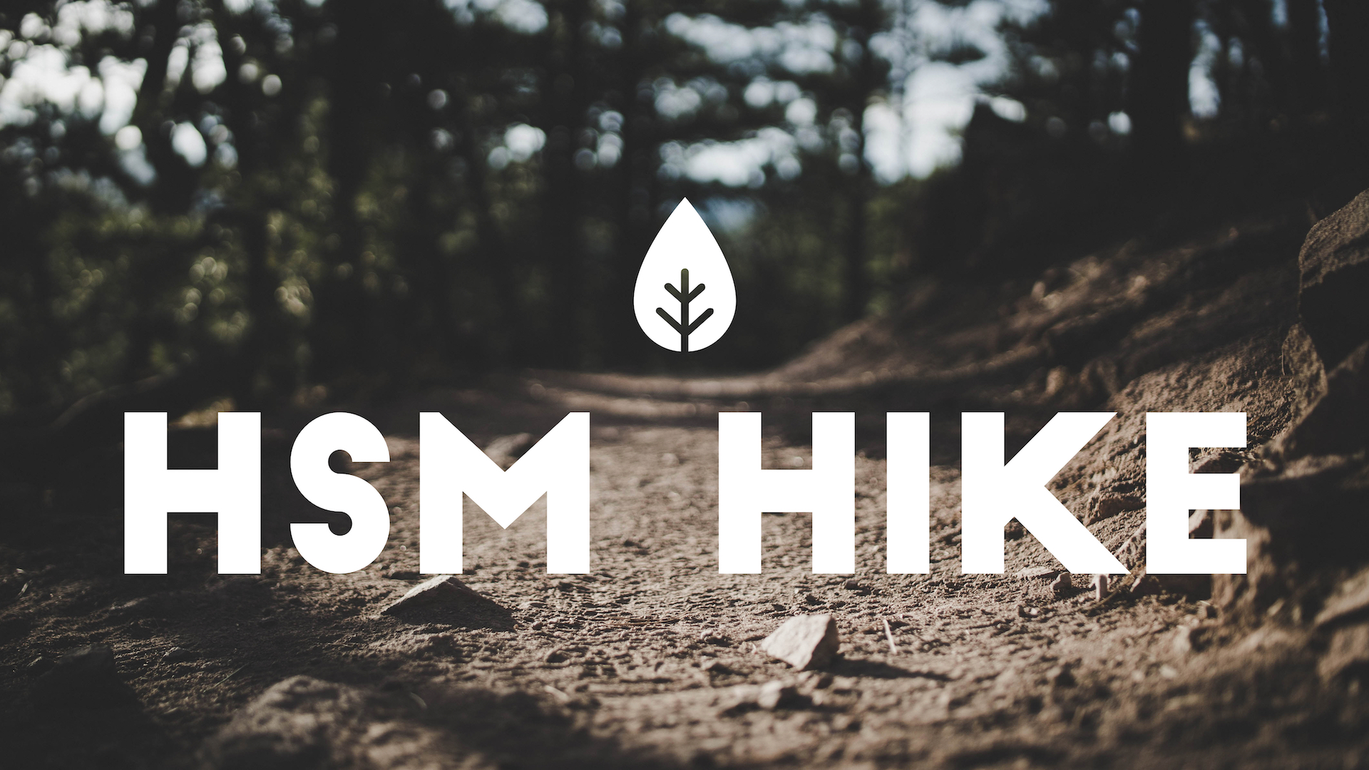 Promo - HSM Hike.jpg