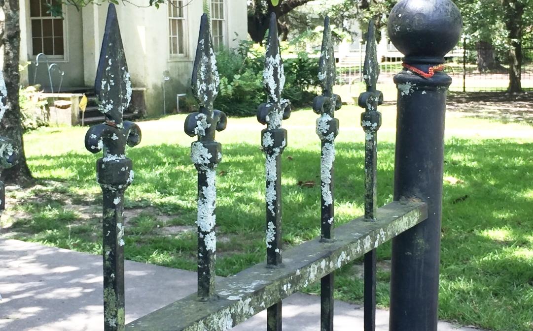 Fences & Walls -