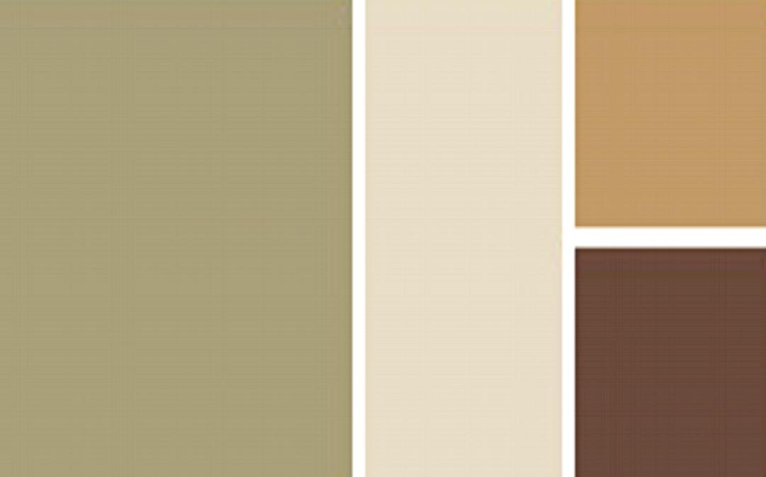 Paint & Color -