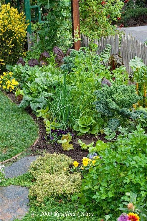 Photo Courtesy of www.rosalindcreasy.com