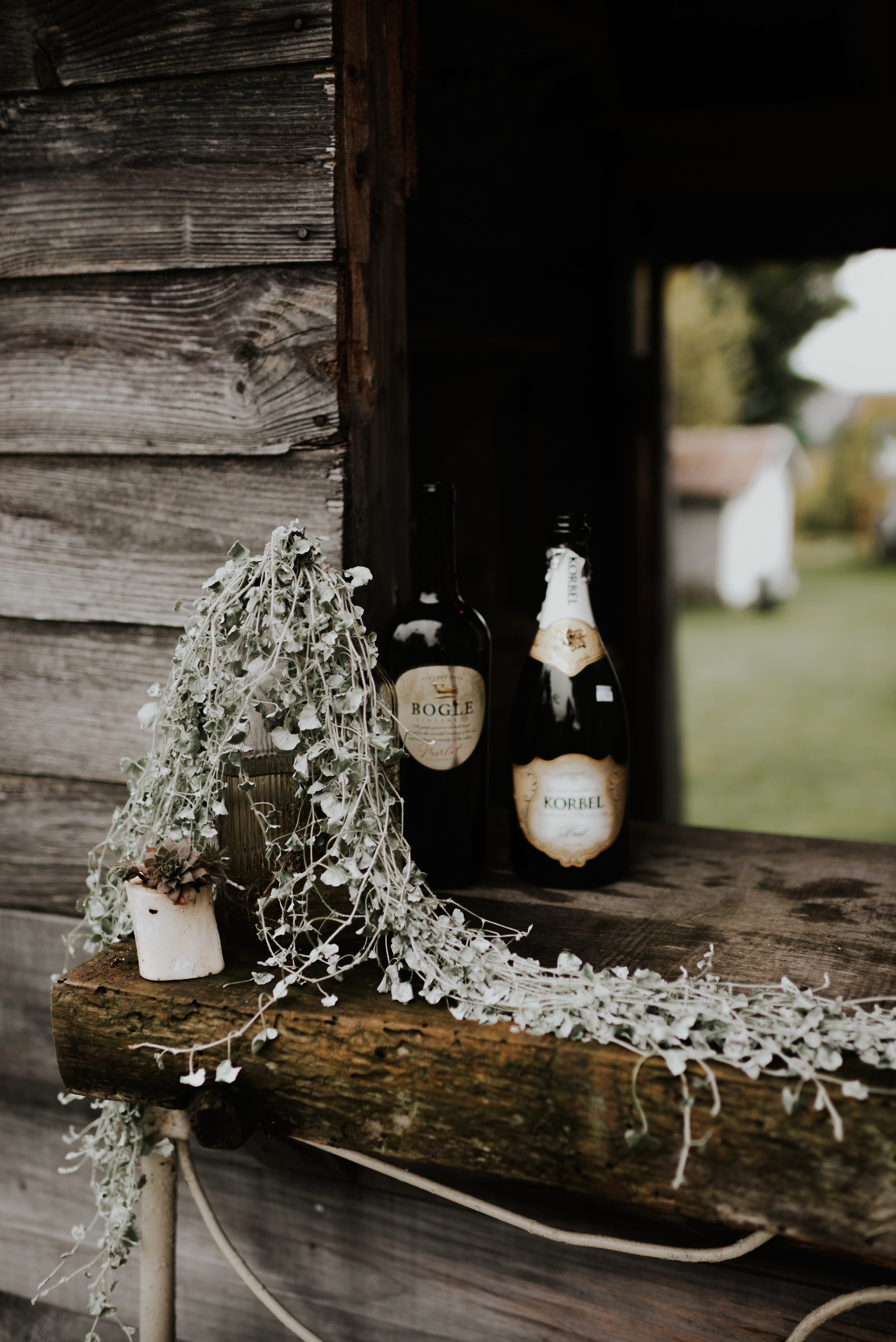 wildsoulsstudio-intimate woodland wedding-the little farm at willoughby-dt-54.jpg