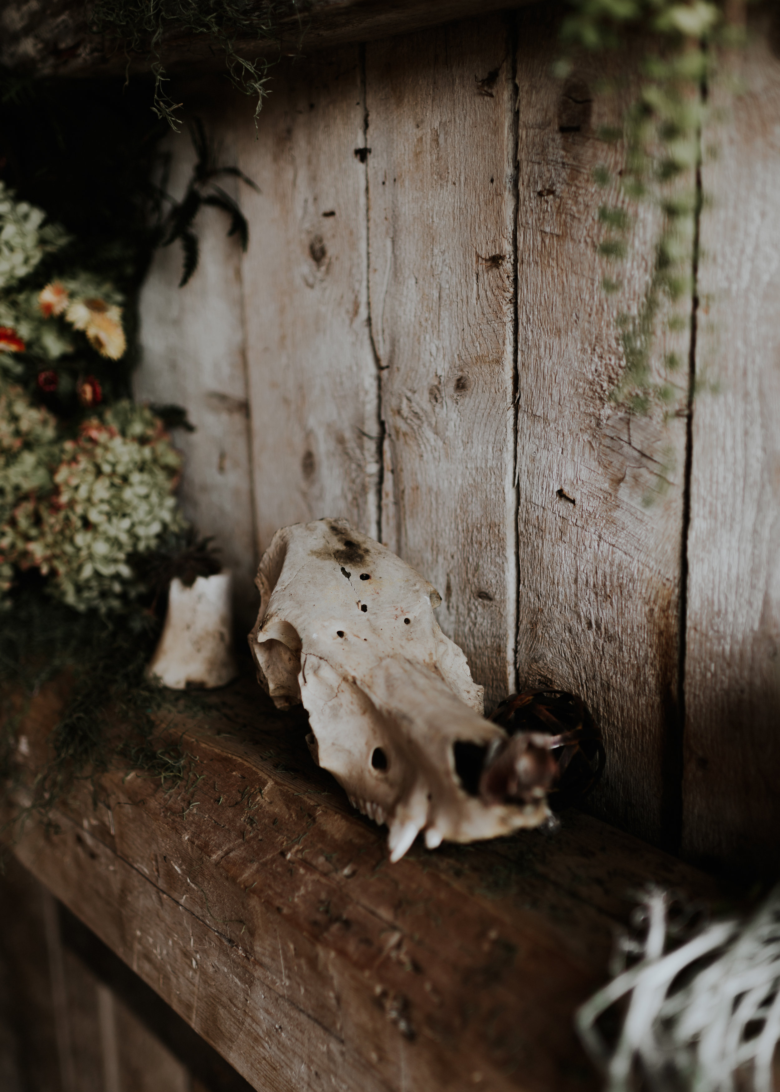 wildsoulsstudio-intimate woodland wedding-the little farm at willoughby-dt-19.jpg