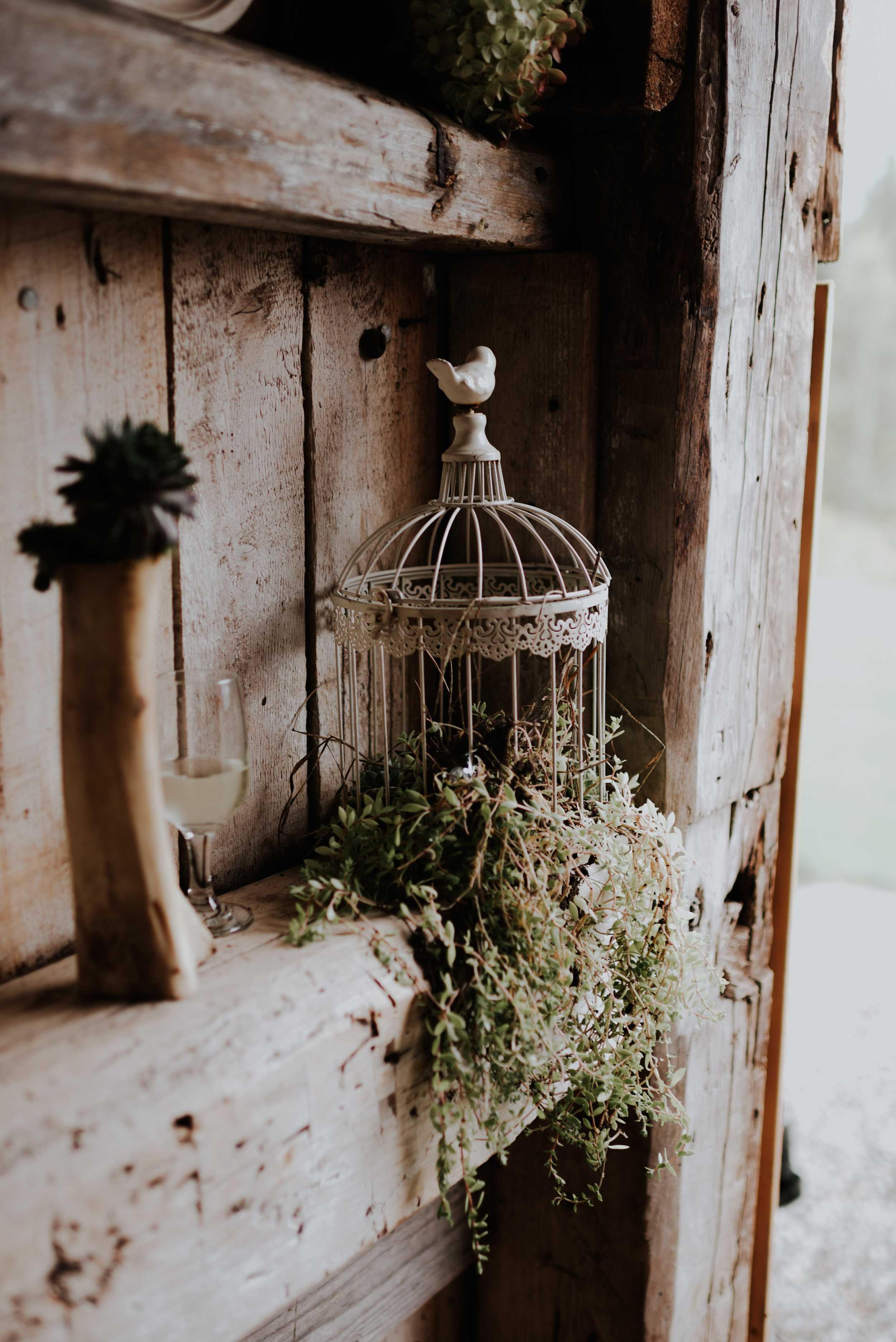wildsoulsstudio-intimate woodland wedding-the little farm at willoughby-dt-21.jpg