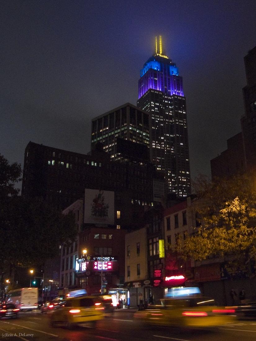 New York City Night Lights, 2011