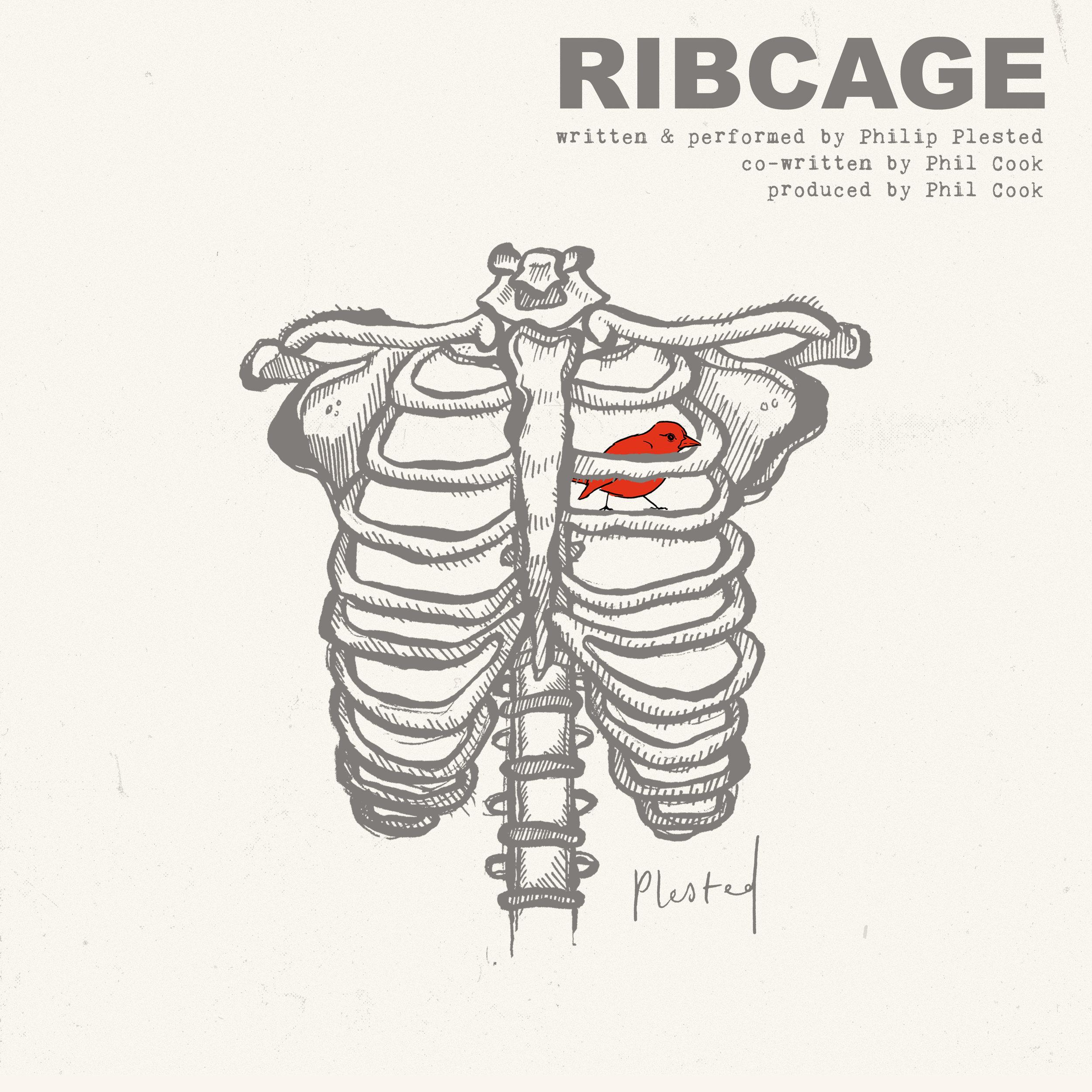 final_ribcage_artwork.jpg