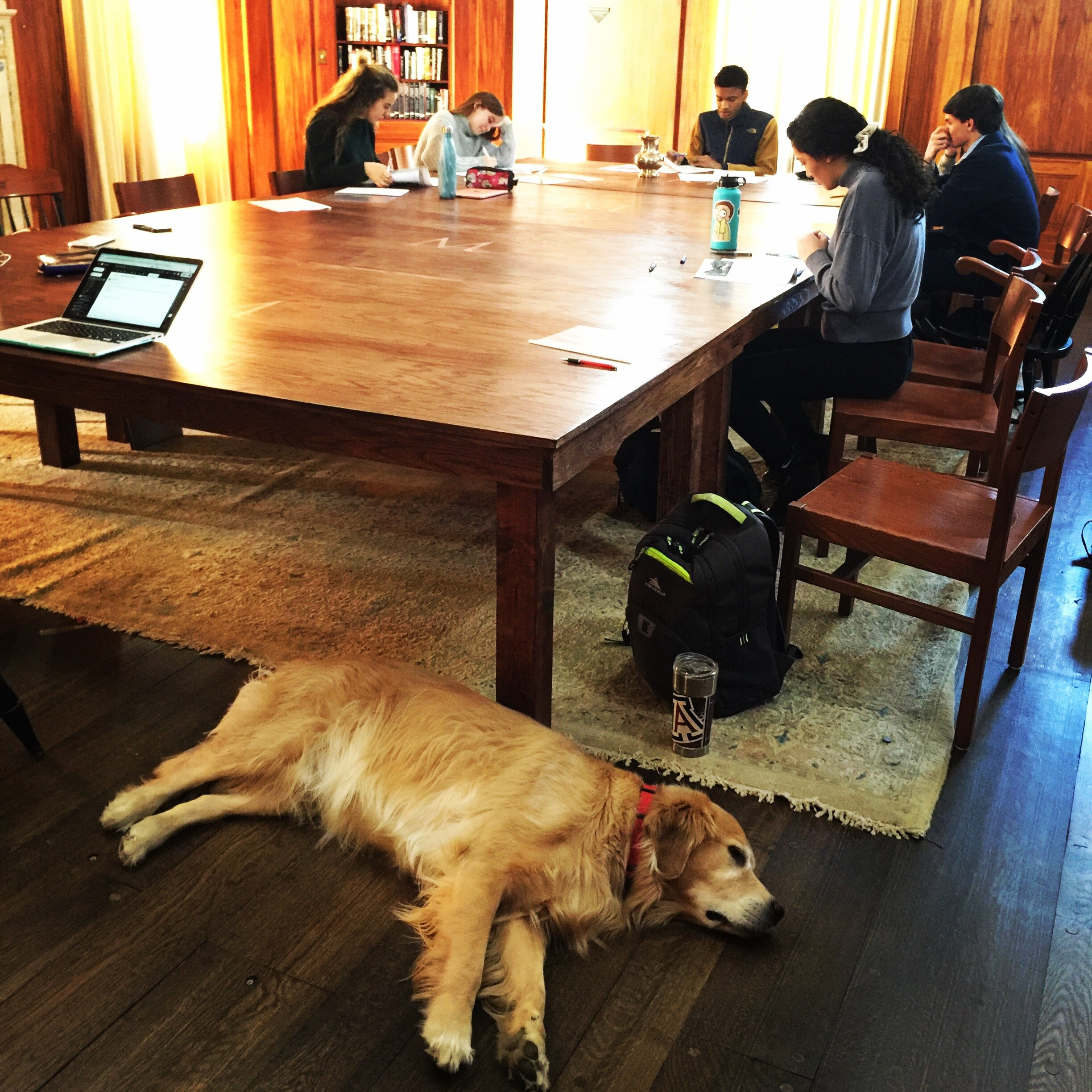 Our Harkness table approach in the humanities is pleasing to students and golden retriever, Buddy.