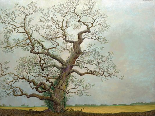 Charles Brindley,  Ancient Red Oak on Edge of Agricultural landscape  ,  2008  oil on canvas,   30x40inches