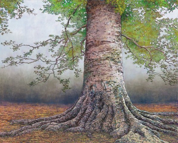 Charles Brindley, Beech Tree in Granberry Grove , 2014, oil on canvas, 30x24 inches